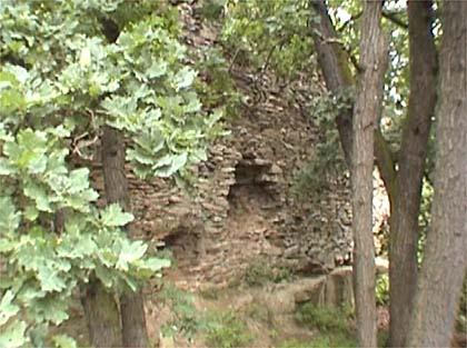 Procházíte obrázky z článku : Litýš - Zbytky hradu