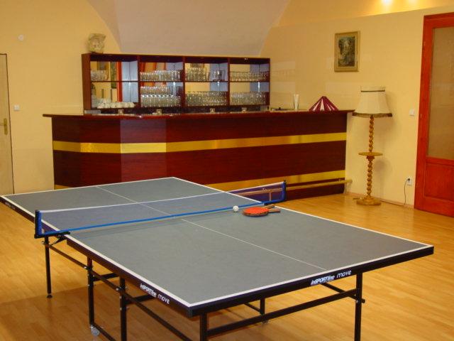Procházíte obrázky z článku : Ping pong